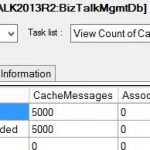 BizTalk Terminator STILL Not Cleaning Up Caching Items?