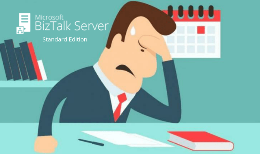 highlighting the key restrictions that are applicable to BizTalk Server Standard Edition