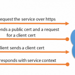 Getting digital certificates right in BizTalk using a third party root certificate in combination with client certificate security and WCF BasicHttp